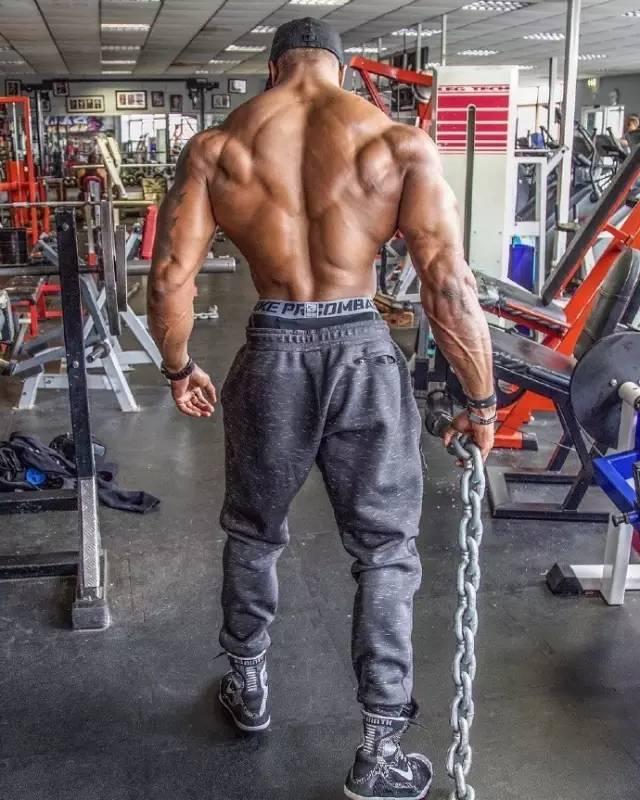 背部锻炼动作_背部锻炼基础6动作_肌肉网