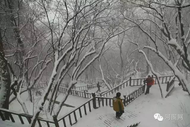 2016年河南洛阳秋天第一场雪!高清大图火热出炉!
