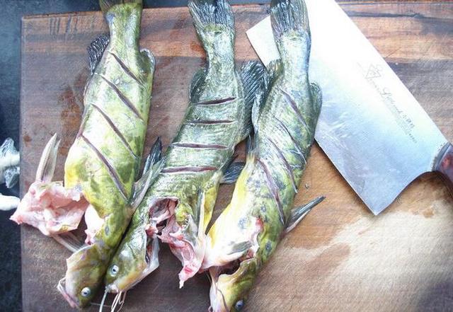 昂刺鱼的做法 昂刺鱼怎么做好吃(2)