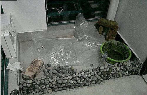 自己在家用鹅卵石堆了个鱼池