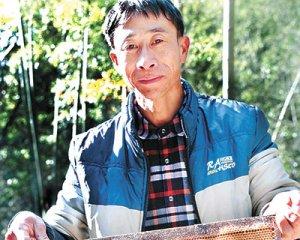 长汀古城青山村养蜂人走上致富路