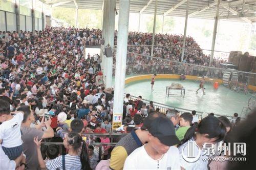 五一小长假 近5万名游客齐聚海丝野生动物世界