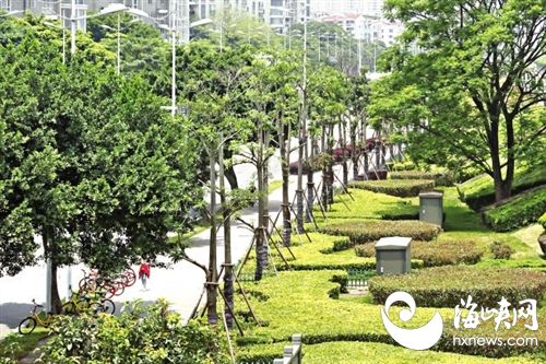 福州地处亚热带,中心城区正好位于福州盆地中心,近年来,城市热岛效应