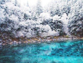 九寨沟迎来入冬第一场雪 晶莹剔透