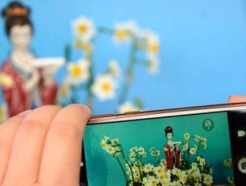 福建漳州展出800多件水仙珍品