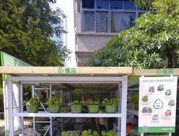 厨余垃圾可兑换新鲜蔬菜