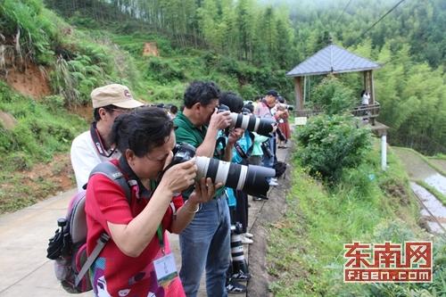 摄影家齐聚丹桂之乡 用镜头绘就诗画浦城