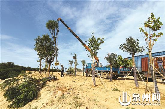 台海网7月4日讯 据东南早报报道,宝盖山风景区的综合提升,将为石狮