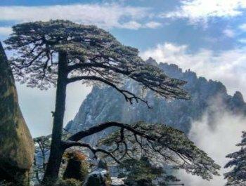 安徽黄山雪后景美如画