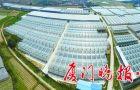 福建法院发布司法服务保障优化营商环境民营企业发展典型案例-重庆seo俱乐部