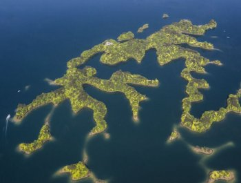航拍:山青水更绿 春满太平湖