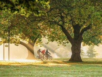 世界环境日:绿色城市 绿色生活