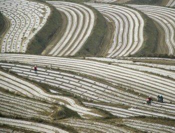 中国减贫的西海固报告