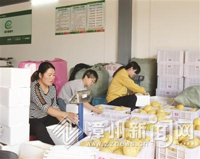 """备战""""双十一""""电商铆足劲 漳州市快件预计将处理1500万件"""