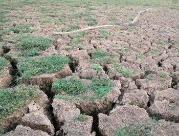 南方部分地区为何持续大旱?