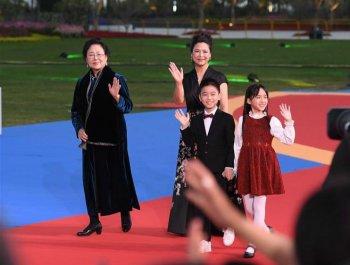 第28屆中國金雞百花電影節紅毯儀式舉行【組圖】