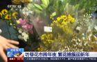 福州:坊巷花市跨年夜 繁花錦簇迎新年