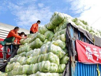 600吨福建蔬菜驰援武汉