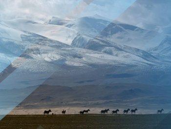 這個公園,將成為中國第一個國家公園!