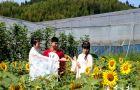 宁德寿宁:生态旅游带动乡村振兴【组图】(3)