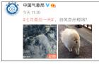 """3号台风""""森拉克""""生成!厦门天气即将变脸(2)"""