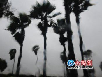 """""""米克拉""""登陆漳浦 厦门雨骤风狂"""