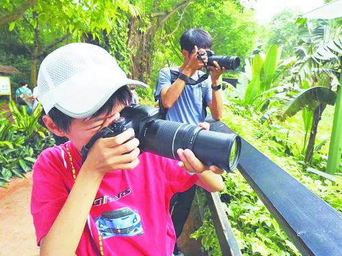 《【摩杰平台怎么注册】厦门12岁少年两年观鸟近230种!》