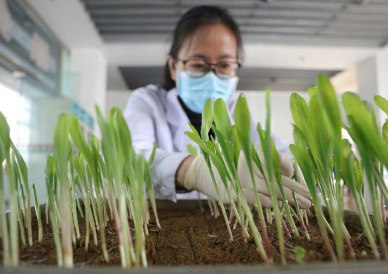 从全国两会看2021年中国发展六大新走向