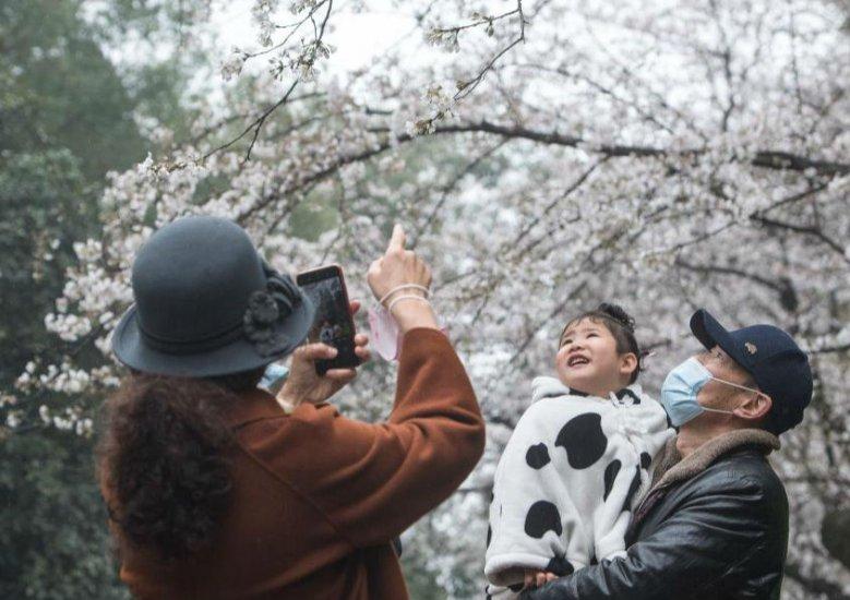 好久不见,武汉的春天